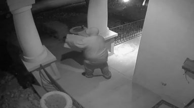 Porch Pirates Take Advantage Of Boost In Online Shopping